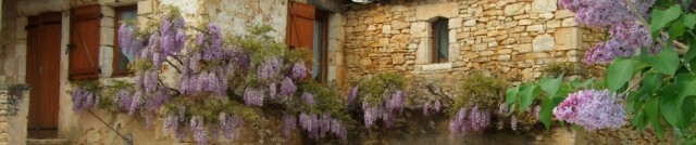 cropped-daglan-neighbor-house-with-wisteria.jpg