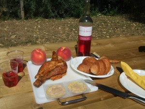 Food set out for a picnic