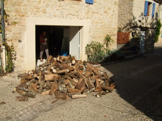 Stack of logs in front of garage