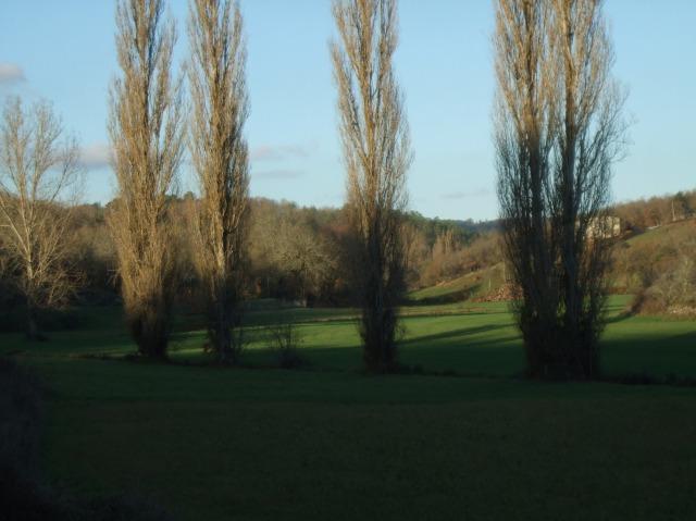 Pasture land outside Daglan, France