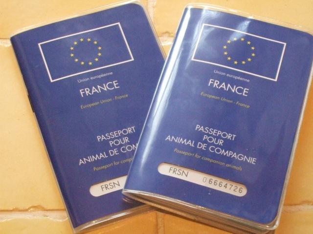 Two animal passports
