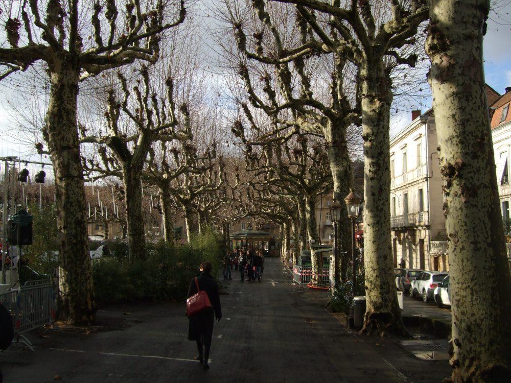 Your Christmas tour of Sarlat, France (1/6)