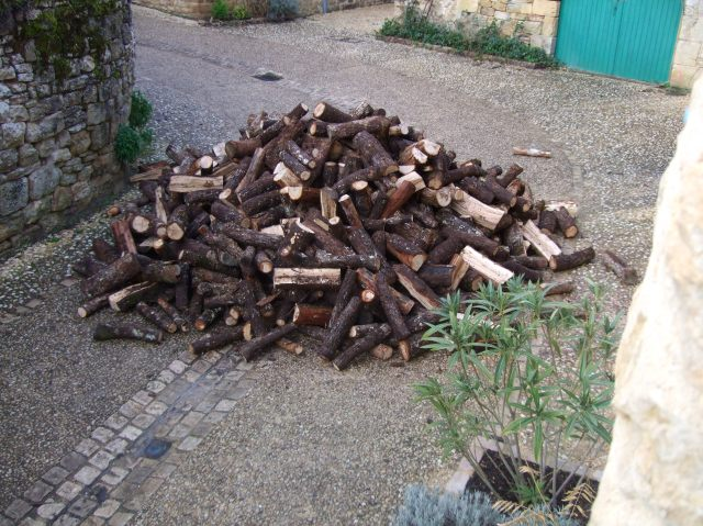 Firewood dumped in front of garage