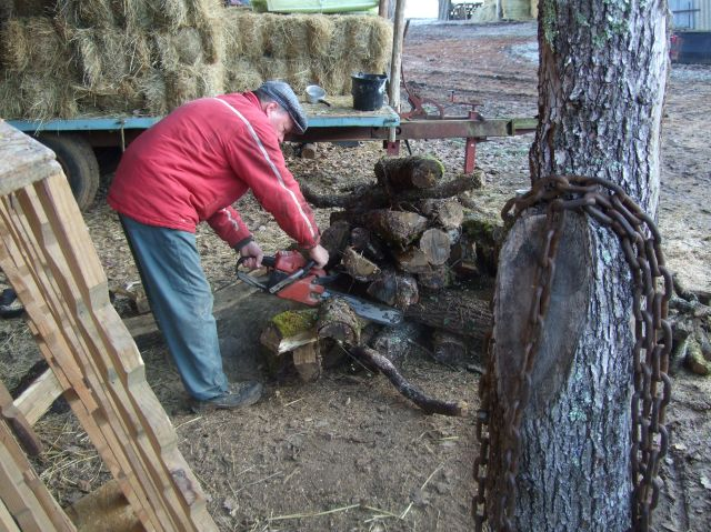 Farmer sawing wood