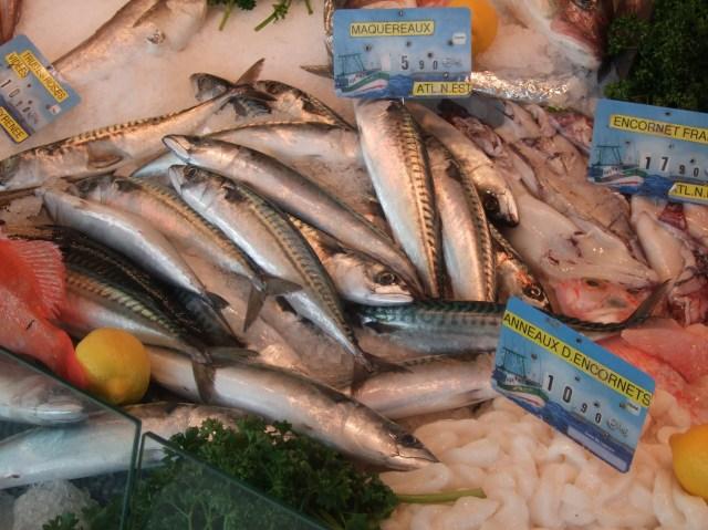 Mackerel at a seafood stall
