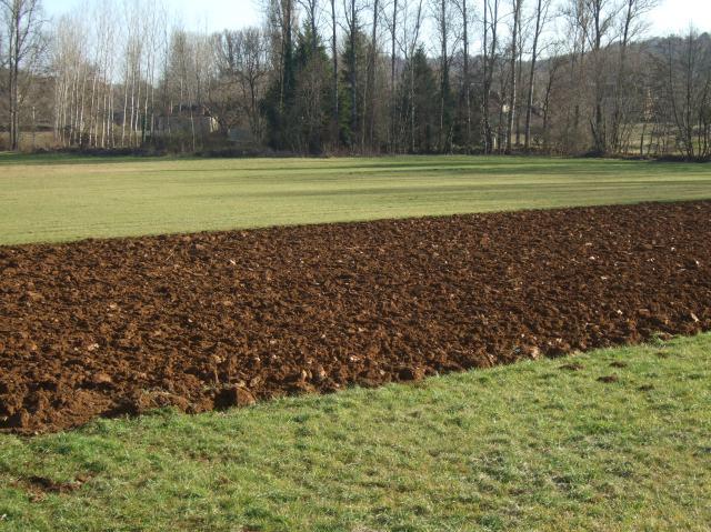 A field outside Bouzic, France.
