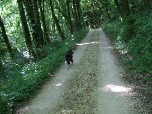 Bella ahead
