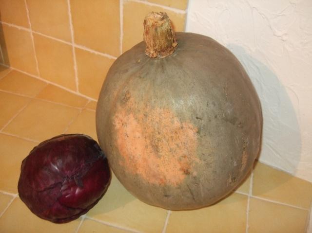 Poitiron & cabbage