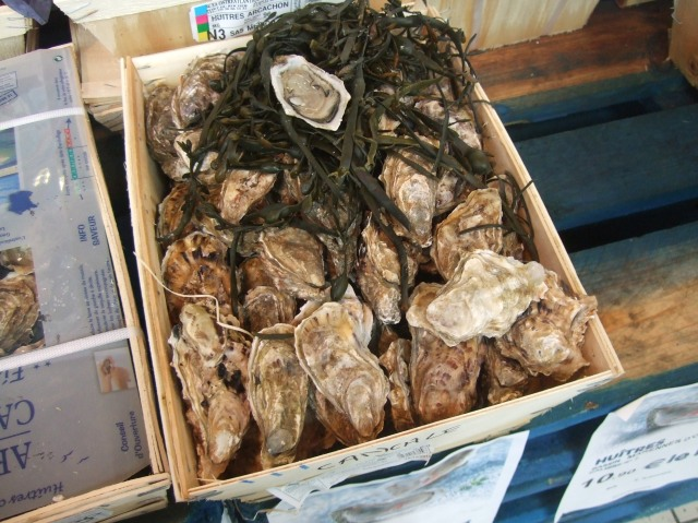 An open box of oysters, with an opened oyster on top.