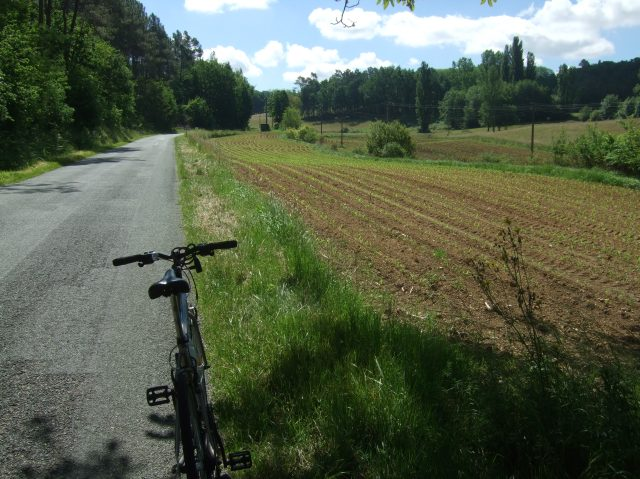 A typical view of farmers' fields beside the road.