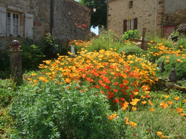 A lovely flower garden in Saint Laurent la Vallée.