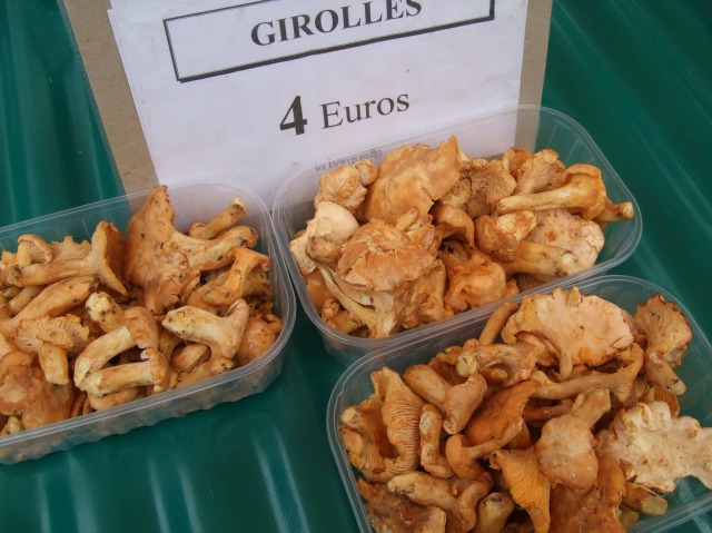 Just 4€ for a basket of these beautiful girolles.
