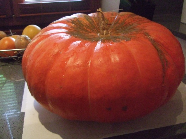 Our real, live, actual pumpkin.