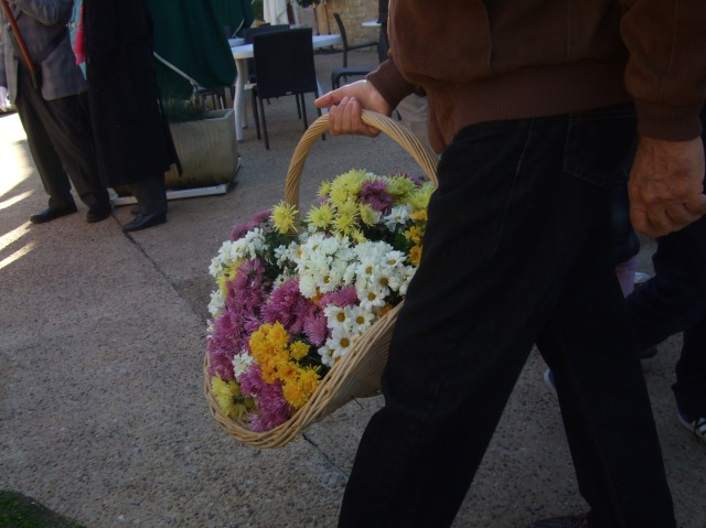 A basket of chrysanthemums, headed for the cemetery.