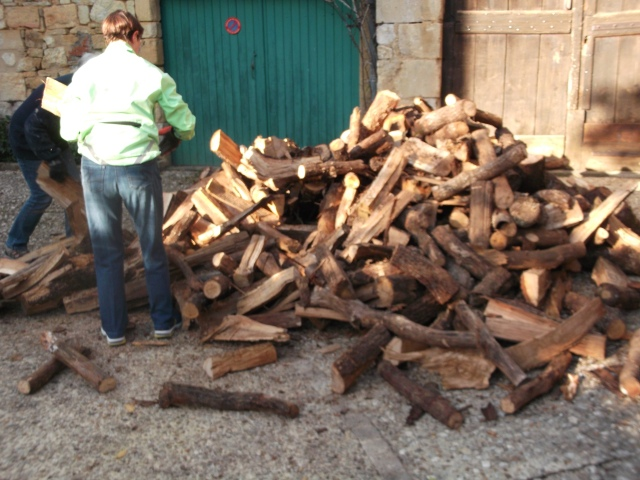 The logs are being lifted and carried into our garage.