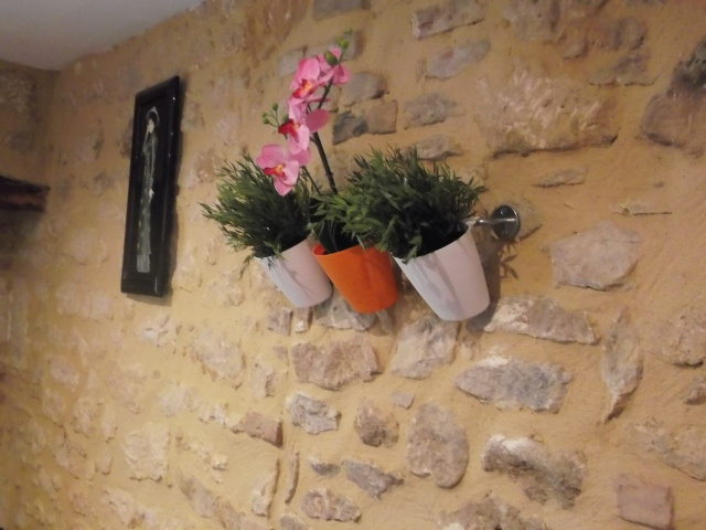 Planters hanging on a wall.