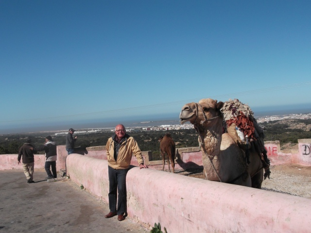 Looking down from the hills to the harbour of Essaouira.