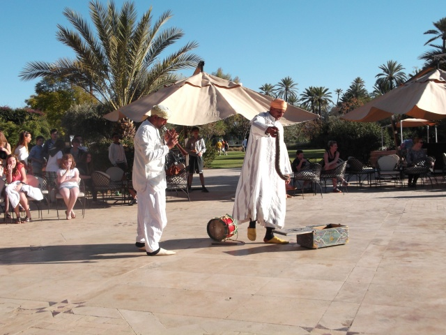 Two snake charmers kick off their act.