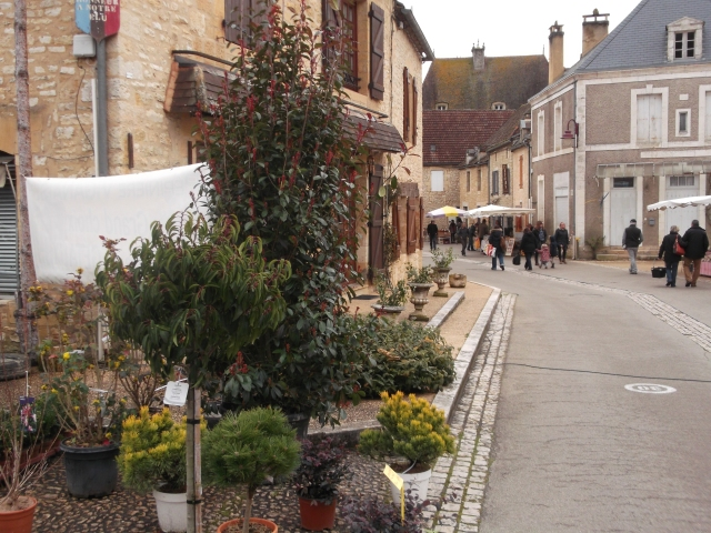 Looking along the village's main street.